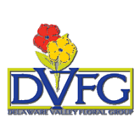 logo-dvfg